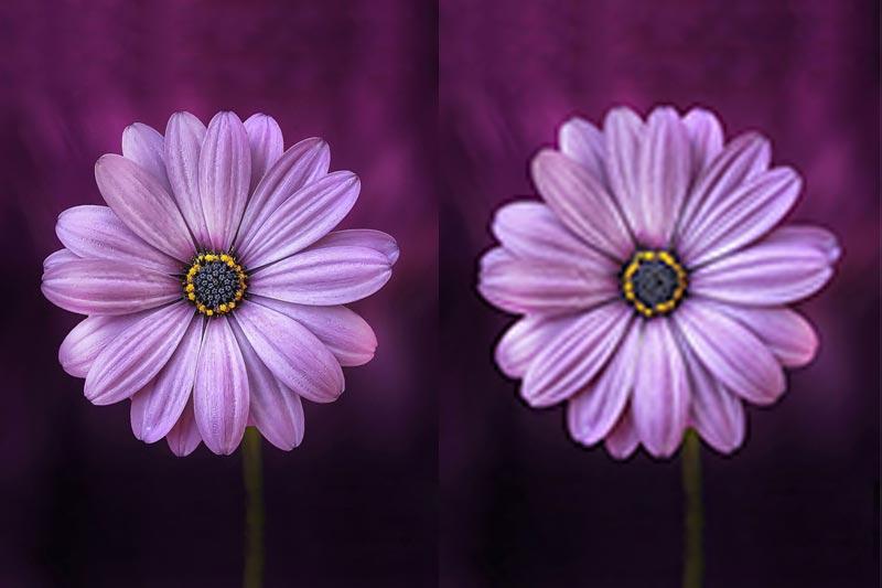 روشهای فشرده سازی تصویر