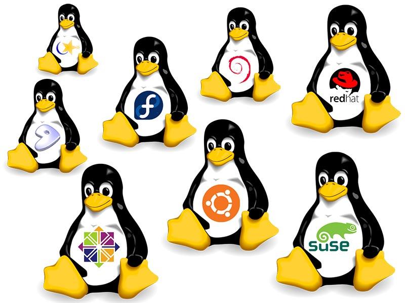 توزیع لینوکس